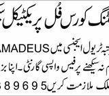 jobs in Pakistan bank