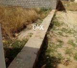 10 Marla Plot near Sher Punjab Houses