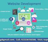 Online business website development