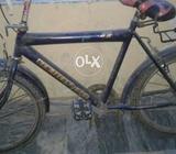 Bicycle black colour