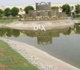 Bahria orchard 10 marla plot for sale 463 G3 phase 4