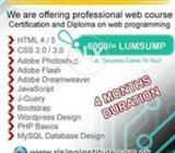 Professional Career Road to Web Designing Career