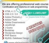The Rising Professionals is offering Website Making Training Program