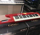 The Roland AX1 Synth keyboard rare vintage one