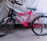 Sony bicycle