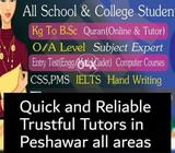 Quick and Reliable Tutors in  all areas