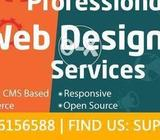 Professional website development and Designing Service