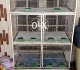 Sirf 2 months used 3 floor cage