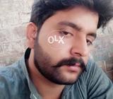 Kisi ko gari chahye with driver monthly