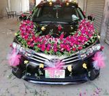 Mukhtar Rent a car