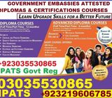 PROFESSIONAL AIR TICKETING COURSE IN CHINIOT IN CHINIOT ISB923035530865