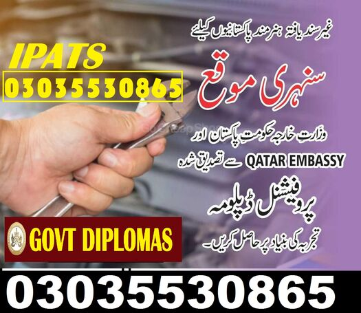 Professional Material engineering diploma (Two Years) Professional Senior Diploma in Physical Health