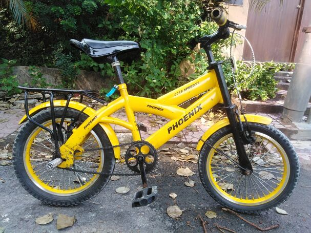 phoinix bicycle good condition